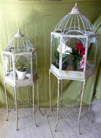 Coppia di serre in ferro e vetro per piante o fiori. Misure: 57X57X132 ...